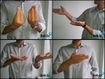 Italian-Sign-Language